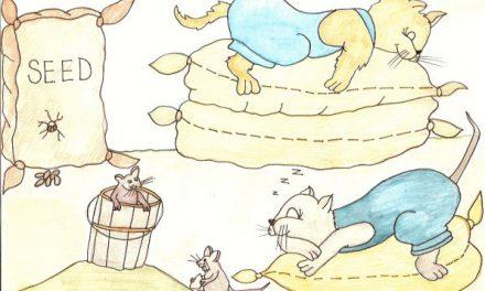 ۵۳. تا وقتی گربهها خوابن، موشها میتونن بازی کنن!