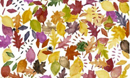 ۸۸. برگهای پاییزی