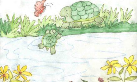 ۴۱. جرج شناکردن یاد میگیره